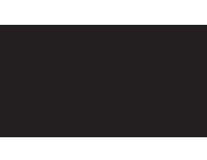 museum mediators
